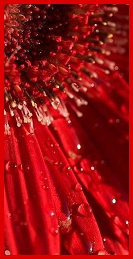 lylou anne collection nuances de couleurs le rouge. Black Bedroom Furniture Sets. Home Design Ideas