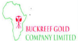 Job Opportunity at Buckreef Gold Mining, Senior Procurement Officer