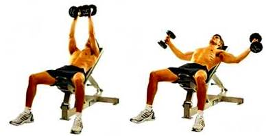 Dumbbell bench openings