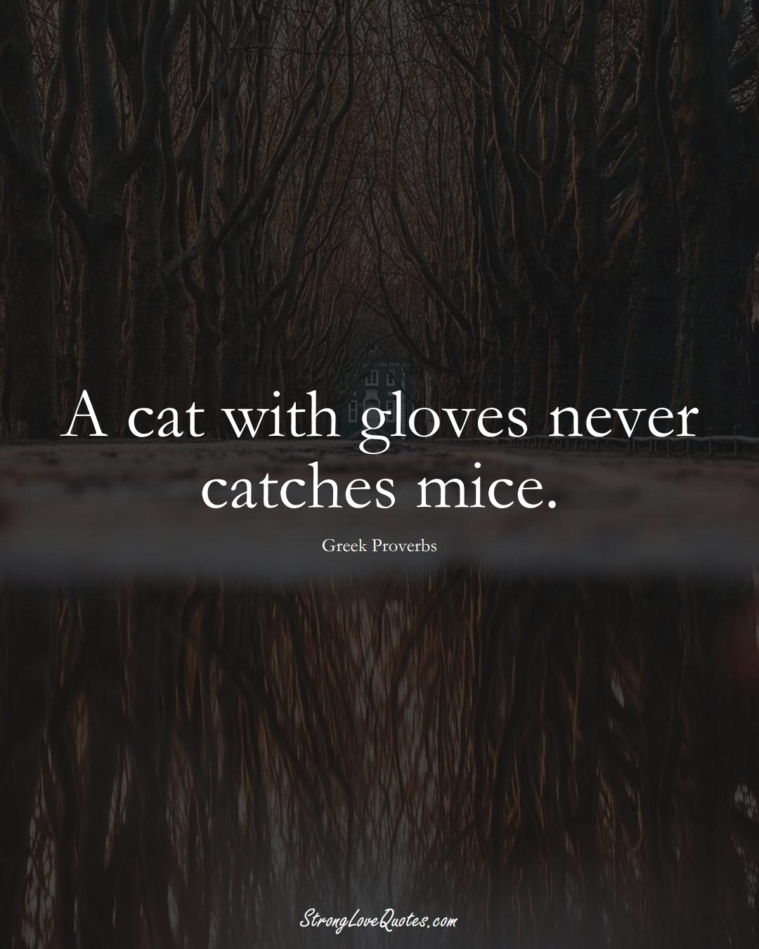 A cat with gloves never catches mice. (Greek Sayings);  #EuropeanSayings