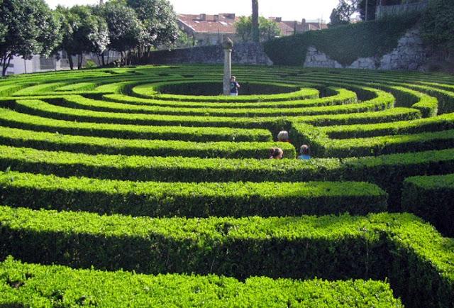 labirinto de arbustos e algumas pessoas