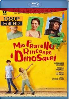 Mi hermano persigue dinosaurios (Mio fratello rincorre i dinosauri) (2008) [1080p BRrip] [Castellano-Italiano] [LaPipiotaHD]