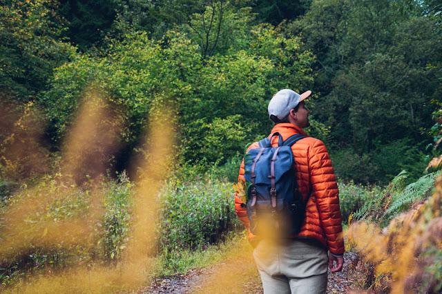 Wildwiesenweg – Eitorf | Wandern in der Naturregion-Sieg | Erlebniswege Sieg 10