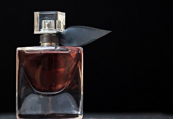 Que sont les phéromones Le parfum du sexe et le rôle qu'ils jouent dans l'amour