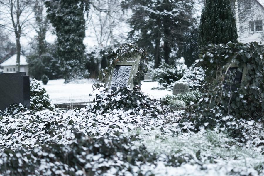 Blog + Fotografie by it's me! - Draussen - Frau Frieda sucht Schnee, efeuumrankter Grabstein mit Schnee