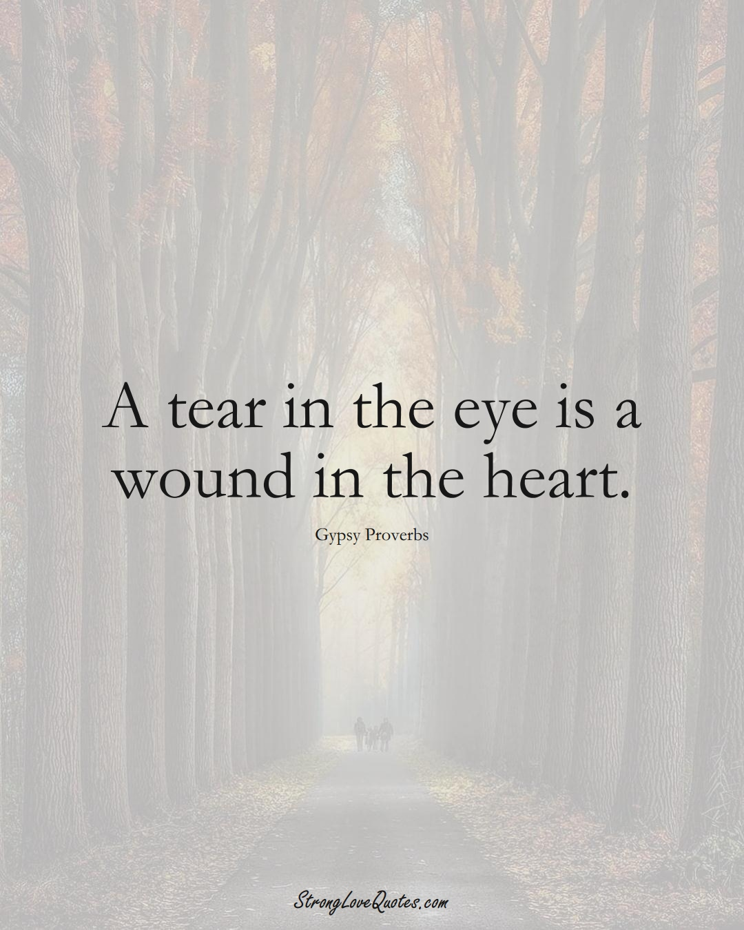 A tear in the eye is a wound in the heart. (Gypsy Sayings);  #aVarietyofCulturesSayings