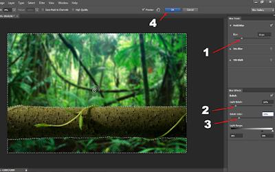 Cara Membuat Efek Blur Pada Foto (Autofocus) di Photoshop 24