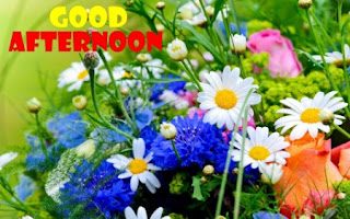 good afternoon my love images