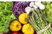 Nutrisi Makanan Untuk Penderita Anemia