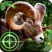 Game Wild Hunter 3D Android Mod