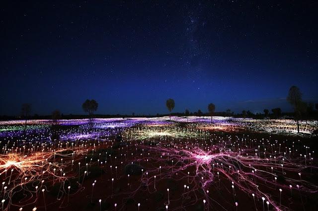 Брюс Мунро створив незвичайну світлову інсталяцію в Національному парку Австралії.