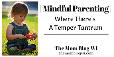 Where There's A Temper Tantrum | The Mom Blog WI | We need to stop looking at Toddler Temper Tantrums as misbehavior and instead view them as communication #Toddler #Parenting #TheMomBlogWI #Blogging #MomLife #MindfulParenting #Independence #Encouragement