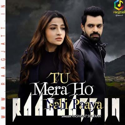 Tu Mera Ho Nahi Paaya by Hashmat Sultana lyrics