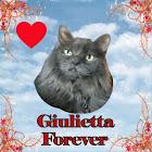 Giulietta Forever
