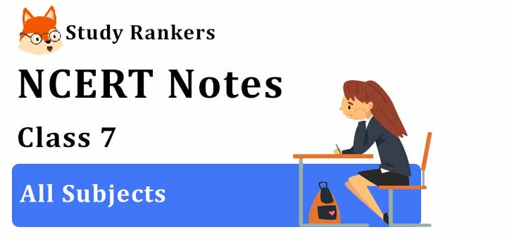 NCERT Revision Notes for Class 7