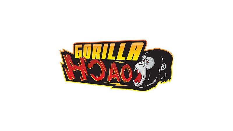 Lowongan Kerja Gorilla Coach