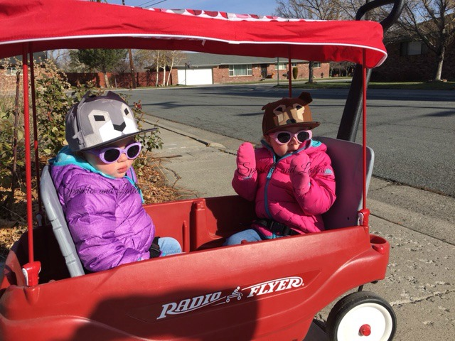 Radio Flyer Wagon Thanksgiving walk