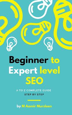 Beginner to expert level SEO Book