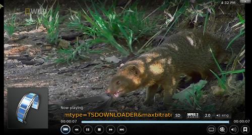 شاهد القنوات العالمية IPTV على برنامج Kodi مع إضافة The Specialist Streams
