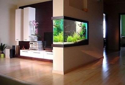 aquarium dinding minimalis