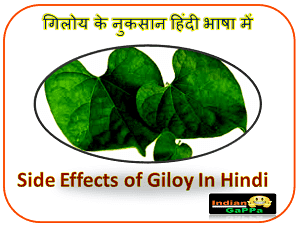Giloy-Side-Effects,Side-Effects-Of-Giloy,गिलोय-के-नुकसान