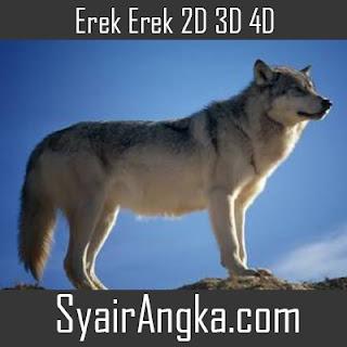 Erek Erek Serigala Paus di Buku Mimpi 2D 3D 4D Lengkap