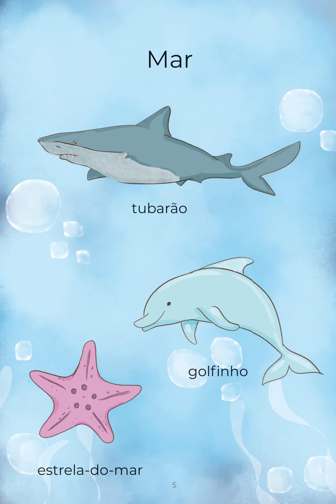 Mar tubarão golfinho estrela-do-mar