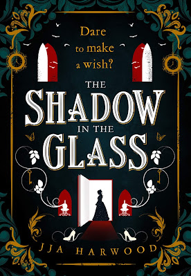 The Shadow in the Glass by J.J.A. Harwood book cover