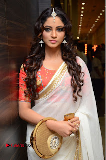 Shilpi Sharma Pictures in White Saree at Kotikokkadu Audio Launch ~ Bollywood and South Indian Cinema Actress Exclusive Picture Galleries
