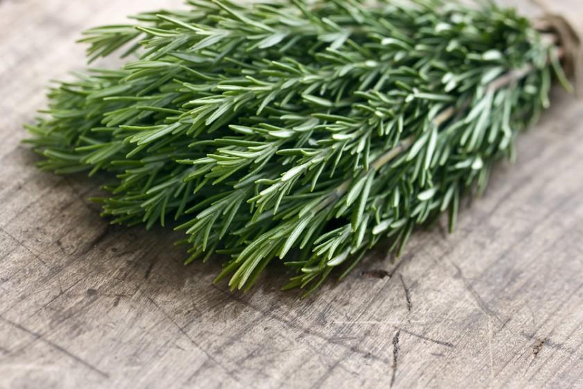 Benefits of Rosemary - Herbal Blend Shaklee