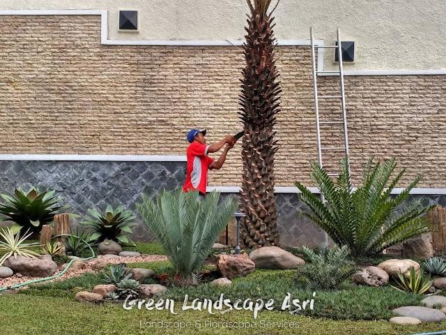 Jasa Tukang Taman Bogor   Jasa Pembuatan Taman di Bogor