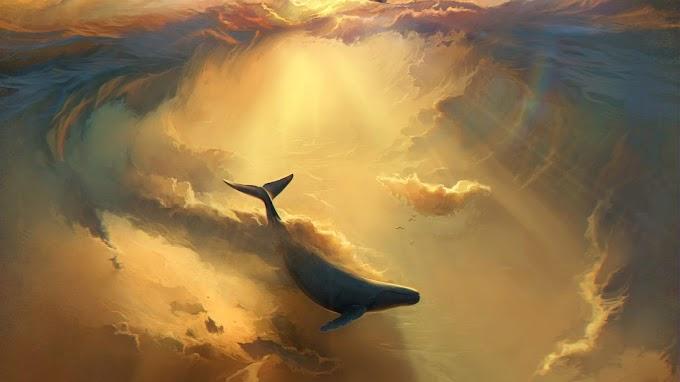 Baleia, Oceano, Nuvens, Pôr do Sol, Arte, Barco