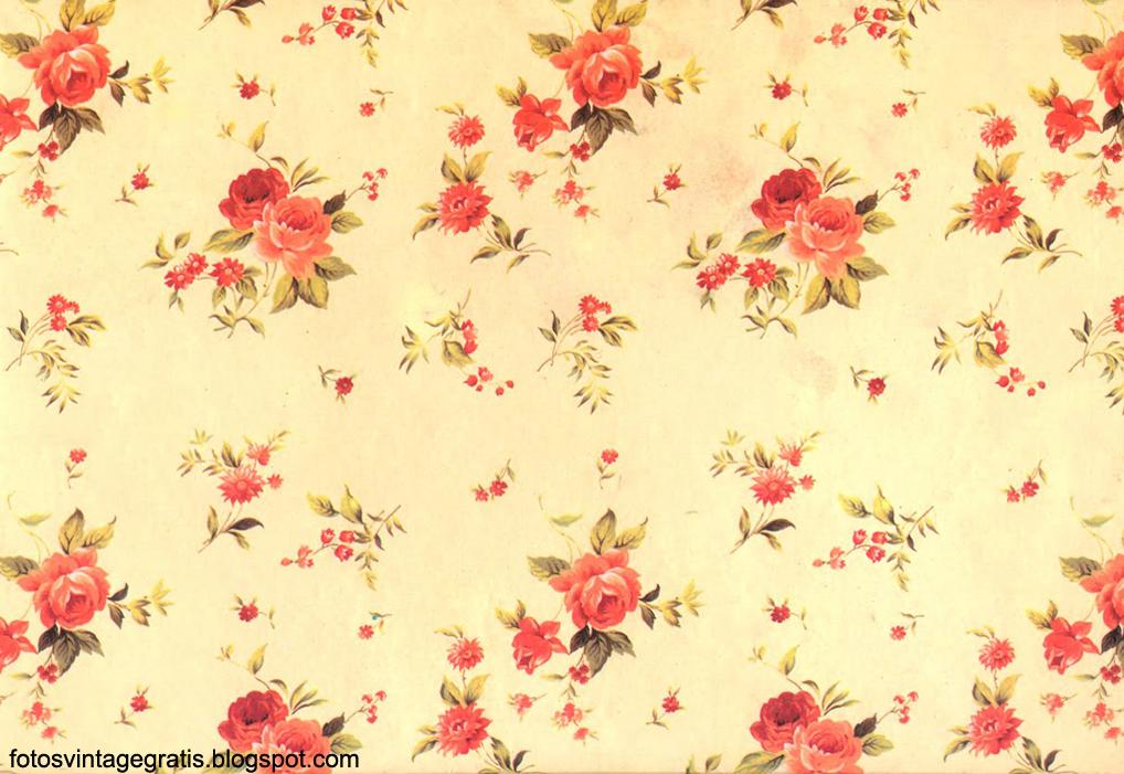Fotos De Flores Para Tumblr