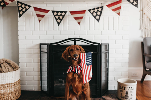 5 Ways To Celebrate 4th of July