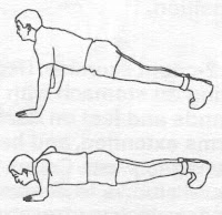 latihan push up
