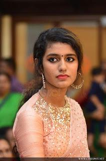 Priya Varrier Saree Pos 7