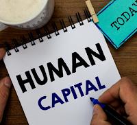 Pengertian Human Capital, Jenis, Teori, dan Manfaatnya