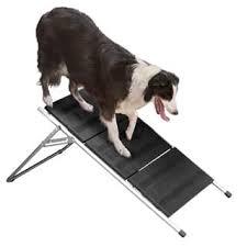 escadas instáveis para cães