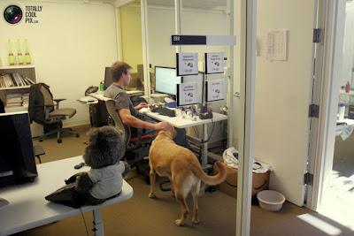 Lo que pronto desaparecerá de las futuras oficinas: tarjeteros, faxes, teléfonos fijos, cubículos... (Encuesta)