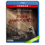 Boda sangrienta (2019) BRRip 720p Audio Dual Latino-Ingles