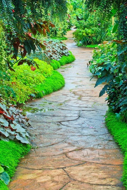 Garden Paths Cool Design