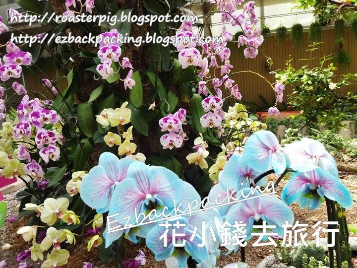 香港蘭花園