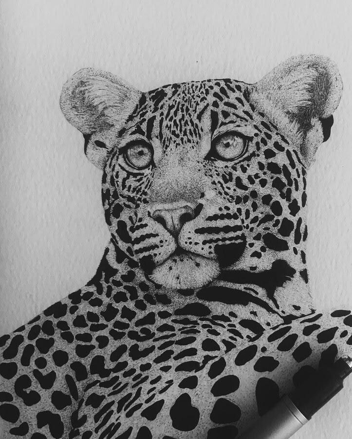 07-Leopard-portrait-Paige-Bates-www-designstack-co