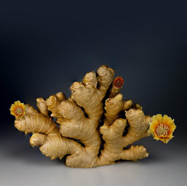 ginger health benefits! Adrak ke gun or fayde
