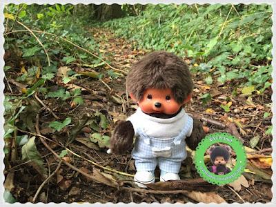 Bubbles le Monchhichi fait des découvertes à la forêt - promenade - bois - parc - rouelle - le havre