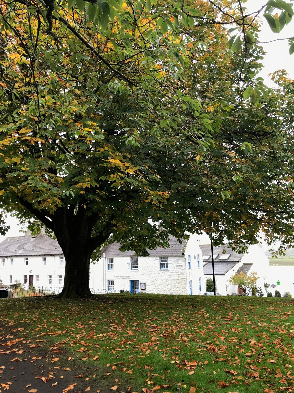 Fall In Kirkcudbright