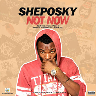MUSIC: Sheposky - Not Now | @sheposky