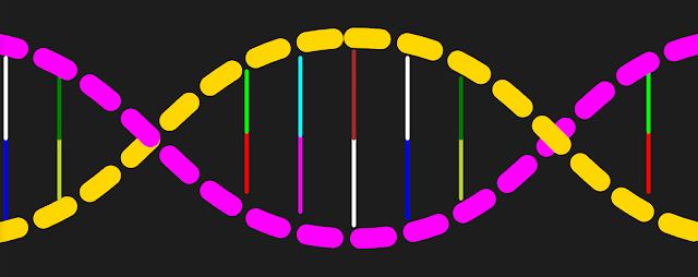 Imej DNA