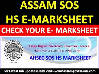 Assam SOS HS Mark Sheet 2019