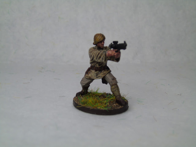 painted luke skywalker imperial assault